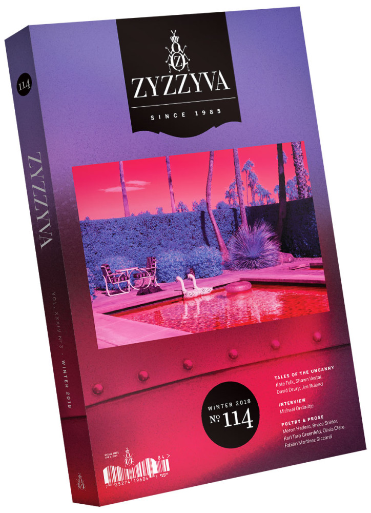 ZYZZYVA Volume 34, #3, Winter 2018