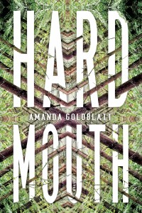 Amanda Goldblatt novel Hard Mouth